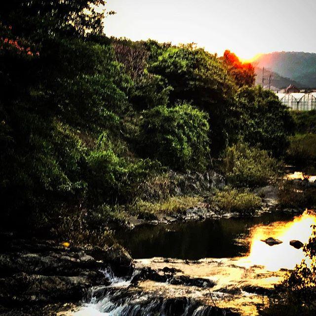 神宮寺川、井伊谷の夕暮れ️^o^